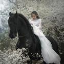 Лошади от фотографа Gosia Makosa