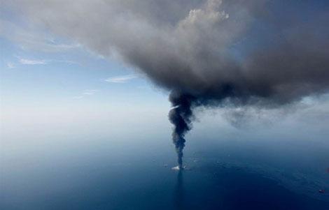 Ежедневно в воды Мексиканского залива продолжает выливаться 800 тысяч литров нефти. Это худшее, что случалось с человечеством, за всю историю добычи нефти.  Сотни представителей животного вида вынуждены покидать родные края в поисках более благоприятной обстановки для жизни. Для кого-то из них катастрофа в Мексиканском заливе оказалась смертельной.