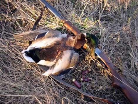 открытие весенней охоты
