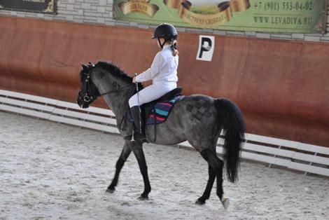 соревнования по выездке для спортсменов пони-клуба