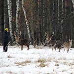 Фотоохота - 2012 - фотоконкурс на призы Национального Фонда Святого Трифона и интернет-магазина Охотничий Стиль
