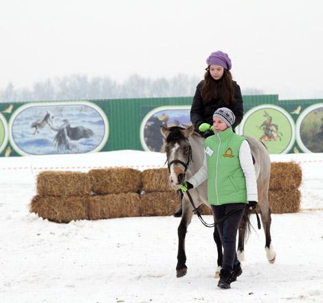 Покататься на лошади в Подмосковье в Национальном конном парке «Русь»