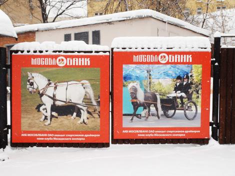 Фото - Андрей Шалыгин - Московский Зоопарк