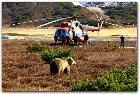 Фото Игорь Шпиленок - камчатские медведи кроноцкий заповедник