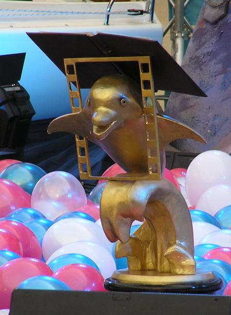 фестиваль золотоф дельфин, дайвинг