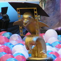 дайвинг, фестиваль золотой дельфин