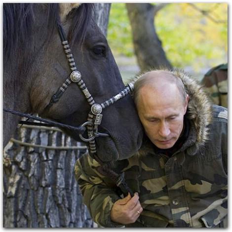 Путин на лошади, путин на коне