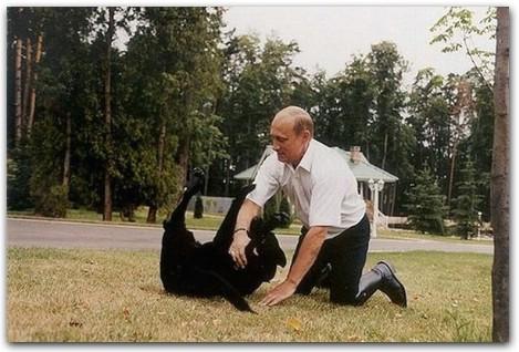 Путин и Кони, путин с собакой