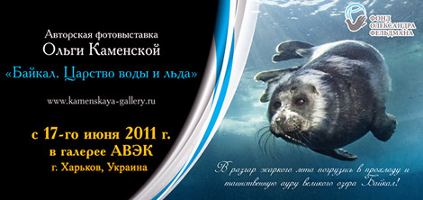 выставка подводного фотографа Ольги Каменской