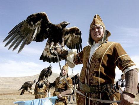 охота с ловчими птицами. салбурун