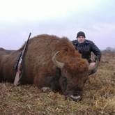 Нацпарк «Припятский» в 2011 году заработал на охоте более 1 млн долларов