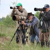 Европейские туристы едут в Беларусь наблюдать за птицами