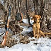Охота в Приамурье: Перспективы и итоги