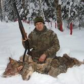 Вологодские волчатники не хотят охотиться бесплатно