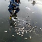 Меры безопасности на зимней рыбалке