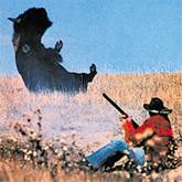 Охота на бизона в Колорадо