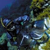 Подводная охота. Выбор маски и трубки – записки опытного покупателя