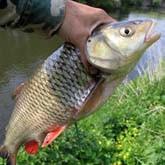 Не джигом единым, или о вреде консерватизма на рыбалке
