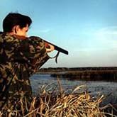 Сроки открытия осенней охоты 2011, сезон охоты 2011-2012. Сроки и ограничения летне-осеннего и зимнего сезона охоты