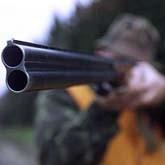 Как наше общество относится к охоте