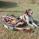 Осенняя охота 2011 на Украине