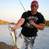 Осенняя рыбалка на Ахтубе: жерех, окунь, судак
