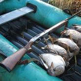 Охота на уток в начале сентября