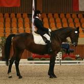 Иппотерапия: От лечебной верховой езды до конного спорта - один шаг
