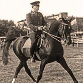 История самой знаменитой лошади Советского Союза