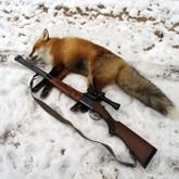 Охота в Белгородской области
