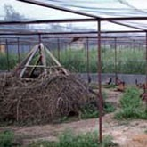 Проектирование и строительство дичеферм и зоопитомников