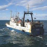 Глобальное потепление накроет для мурманчан богатый стол из морепродуктов