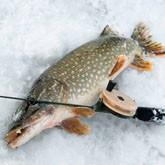 Зимняя рыбалка в Казахстане и