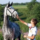 Обучение и понимание охотничьей лошади