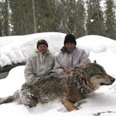 Охота на волка под Пудожем