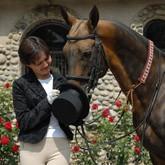 Лошадь и человек: Персональная философия искусства верховой езды