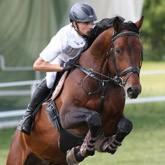 Стипль-чез: Конный спорт, который никого не оставит равнодушным