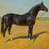 Лошади на картинах музея коневодства: Достойные могущественных царей