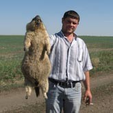 Охота на сурка в Казахстане
