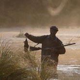 Воронежская область: Охота на зайца должна стать доступнее