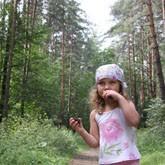 Как не заблудиться в лесу и что делать, если заблудился в лесу