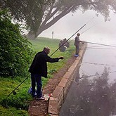 Платная рыбалка в Подмосковье: Рыбные места и золотое дно