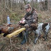 Сезон осенней охоты в Тамбовской области
