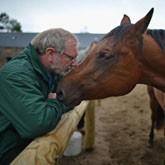 Реабилитация военнослужащих: Хозяйство HorseBack в Великобритании
