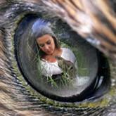 Женщины с ловчими птицами