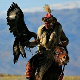 Беркут в помощь! Охота с ловчим беркутом - старинная традиция, берущая свое начало в древней Индии