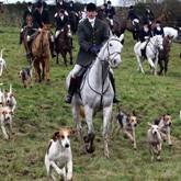 Рождественская охота в Англии