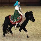 22 марта в КСК ЛЕВАДИЯ пройдут соревнования по конкуру на пони и КЮР