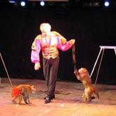 30 и 31 марта на Шоу - арене «Под куполом» Цирковой дивертисмент