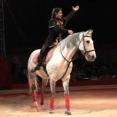 «Мир лошадей»: премьера спектакля в Национальном Конном Парке «РУСЬ»